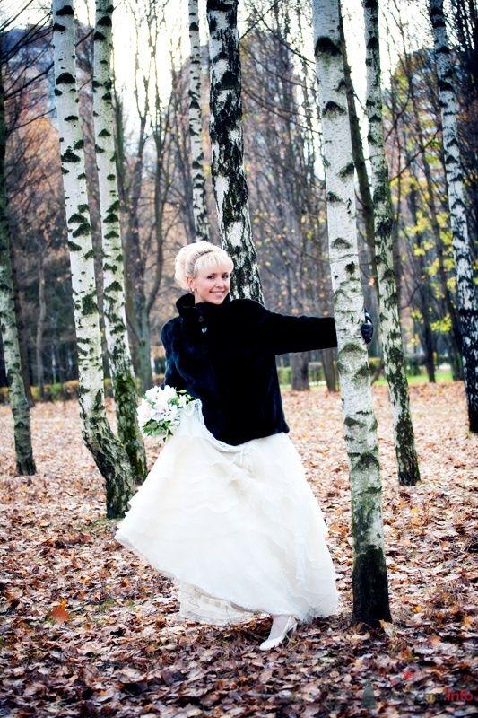 Фото 58882 в коллекции наша свадьба- 31 октября 2009