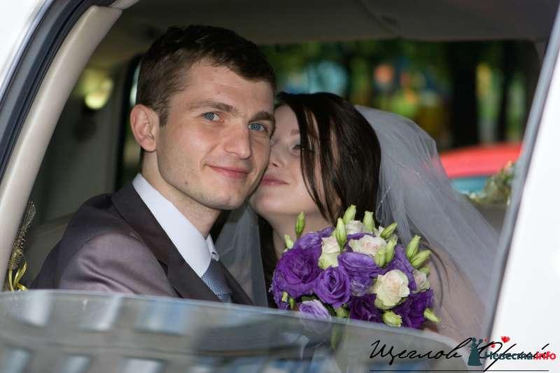 Фото 117269 в коллекции Денис и Виолетта - Щеглов Юрий - фотограф