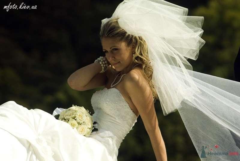 Свадебные фотографии - фото 45590 6091987