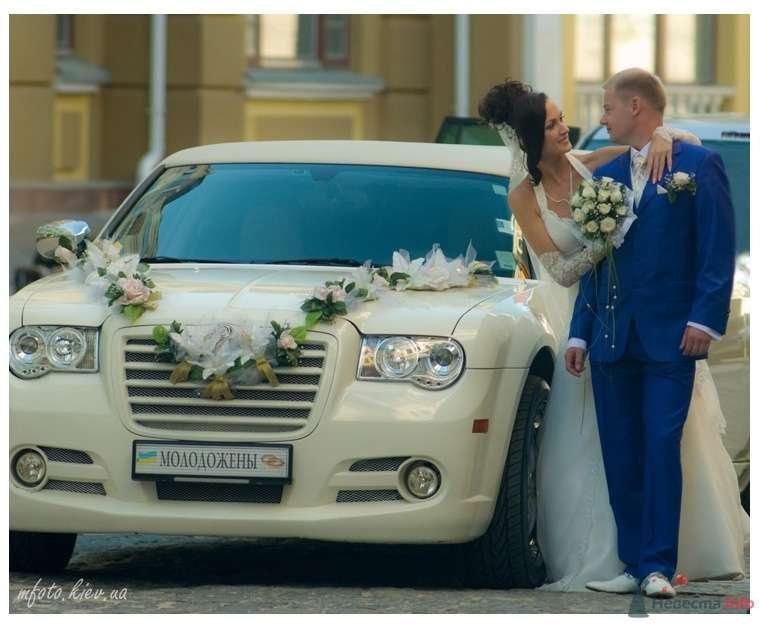 Свадебные фотографии - фото 45591 6091987