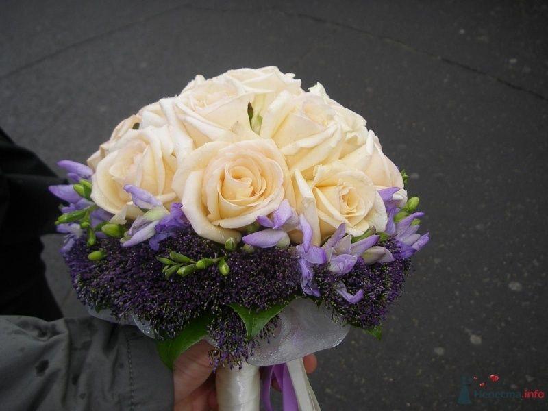 Фото 47250 в коллекции Свадьба подруги 08,07,09 - женушка  Анастасия