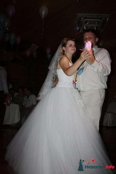 Фото 131201 в коллекции Свадьбы - Ведущая Власова Дарья