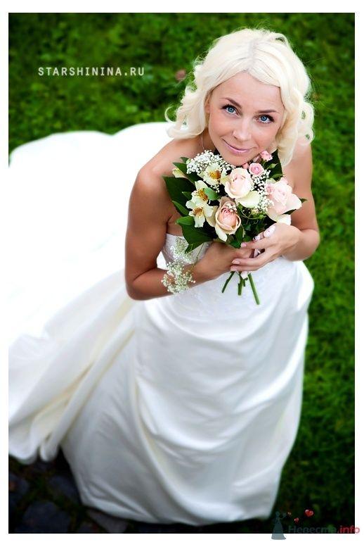 Фото 52282 в коллекции Свадьбы  2009-2011гг... - Фотограф Старшинина Мария