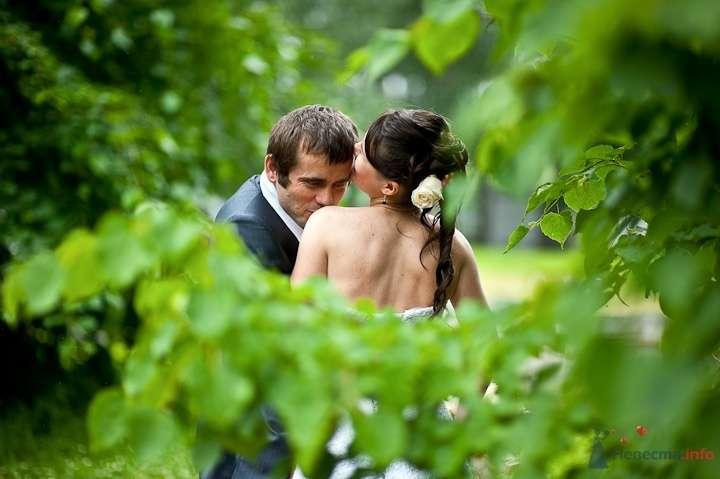 Жених и невеста стоят, прислонившись друг к другу, посреди леса - фото 45839 Фотограф Максим Корогодский