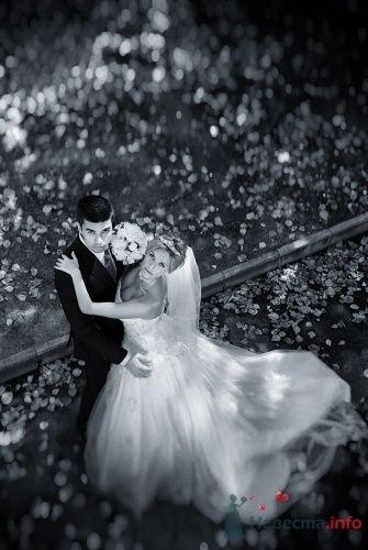 """Фото 2129 в коллекции Мои фотографии - Студия свадеб """"Карамель"""""""
