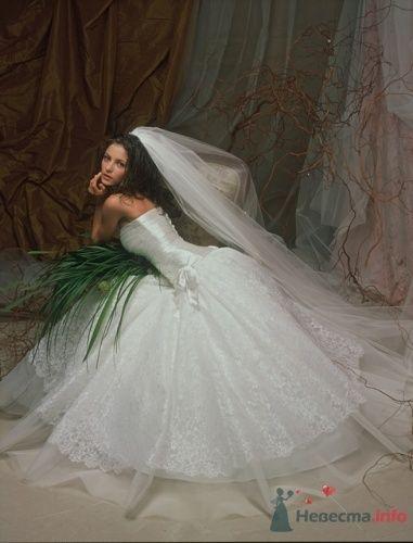 "№ 721 - фото 2077 Свадебный салон ""Сударыня"""