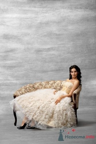 "TO BE BRIDE   5311 - фото 2660 Салон свадебной и вечерней моды ""Амадеус"""