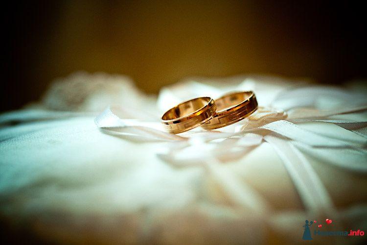 Золотые обручальные кольца, выполненные в классическом стиле, на фоне