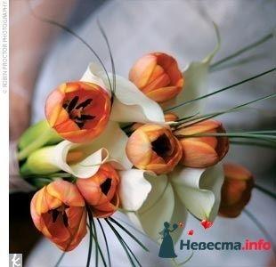 Фото 123953 в коллекции для Девочек - МиЛаШКа