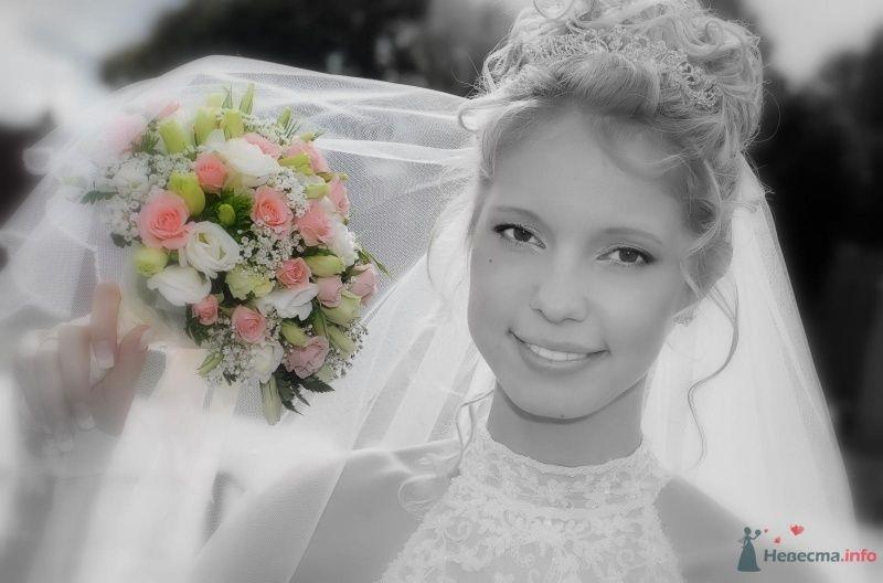 Фото 58760 в коллекции Мои фотографии - Svetlya4oK