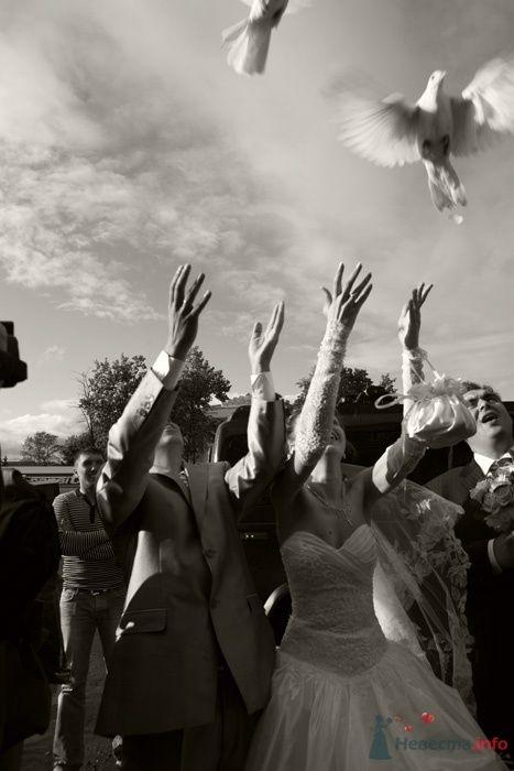 Фото 45867 в коллекции Свадебные фотографии - Невеста01