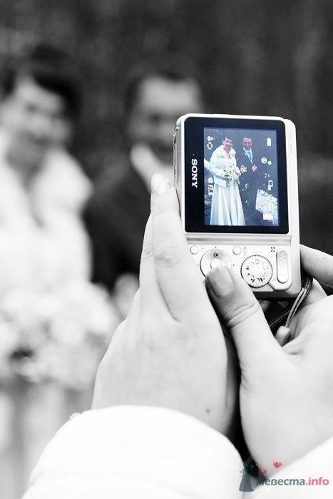 Фото 52913 в коллекции Свадебные фотографии