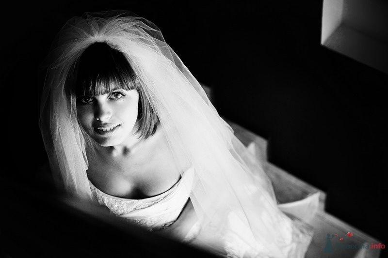 Фото 61761 в коллекции Моя оранжевая свадьба - yanechka