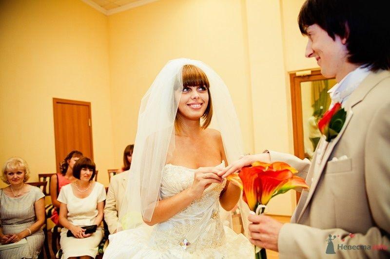 Фото 61791 в коллекции Моя оранжевая свадьба - yanechka