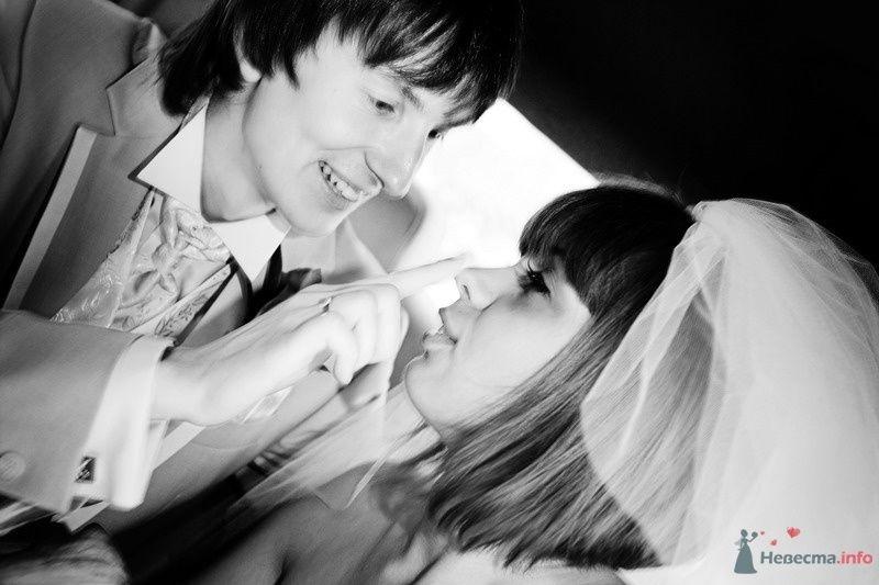 Фото 61881 в коллекции Моя оранжевая свадьба - yanechka