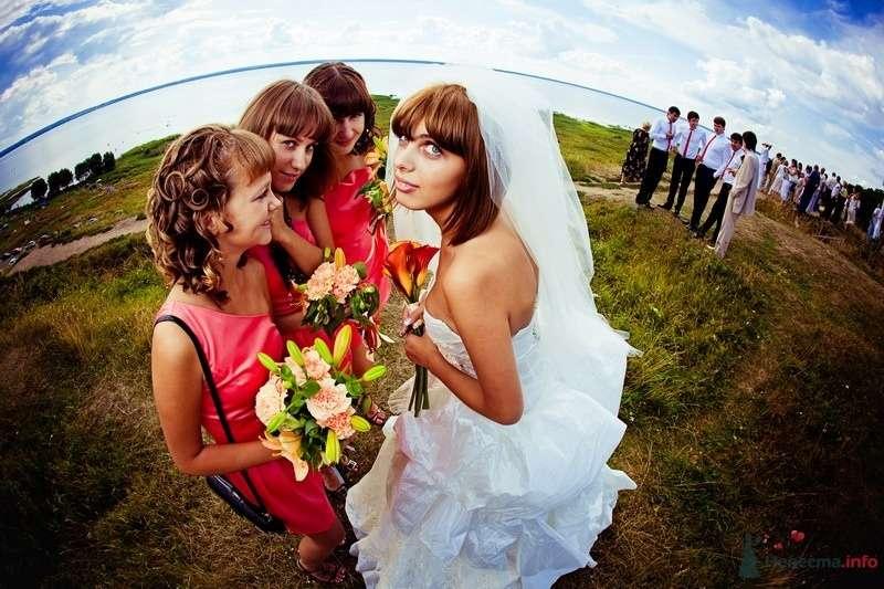 Невеста и три её подруги в розовых платьях стоят в поле - фото 62122 yanechka