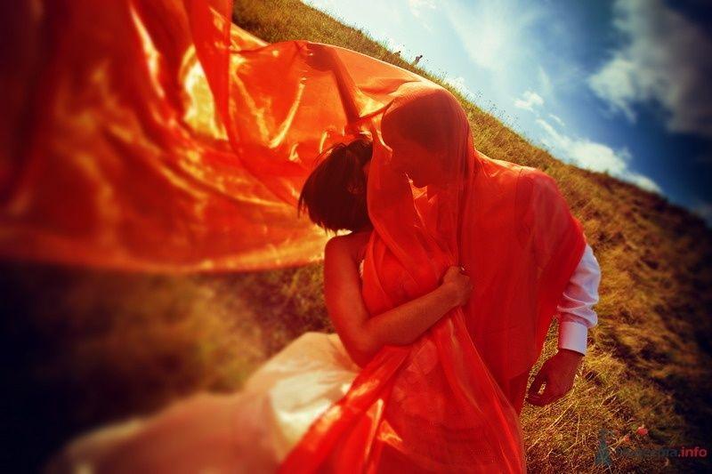 Фото 62146 в коллекции Моя оранжевая свадьба