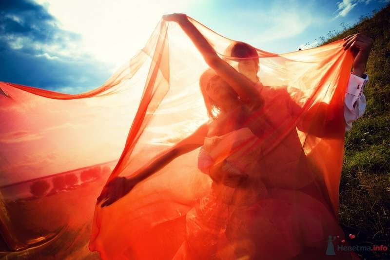 Фото 62150 в коллекции Моя оранжевая свадьба - yanechka