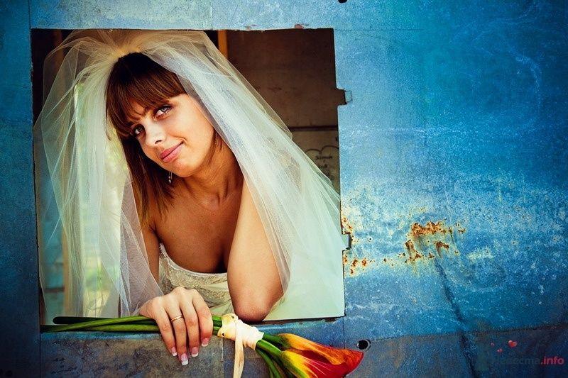 Фото 62158 в коллекции Моя оранжевая свадьба