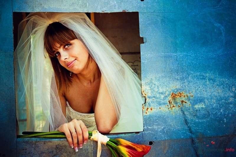 Фото 62158 в коллекции Моя оранжевая свадьба - yanechka