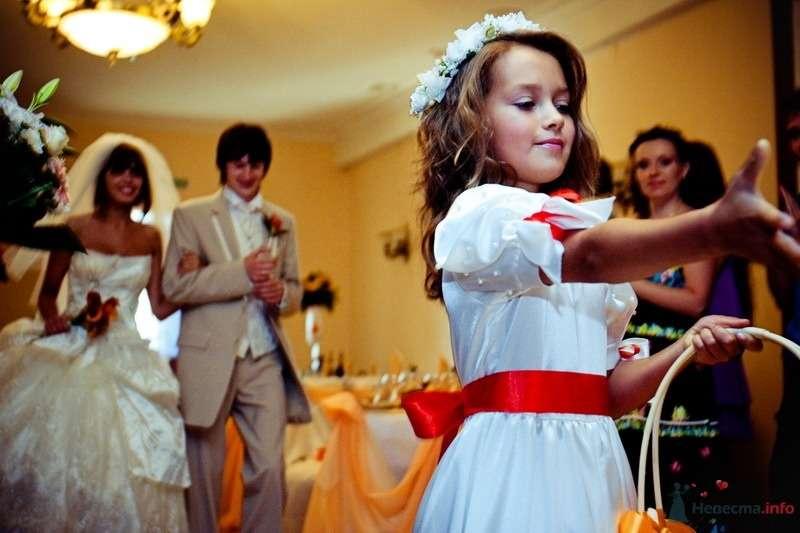 Фото 62481 в коллекции Моя оранжевая свадьба - yanechka