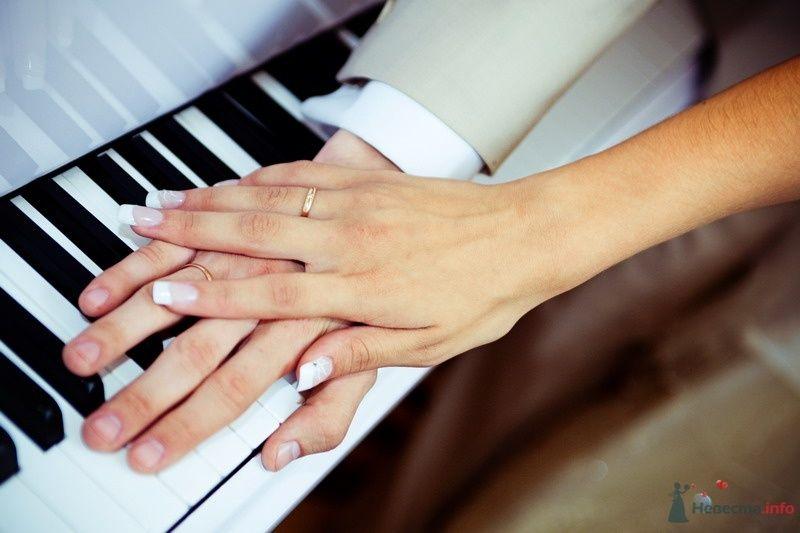 Рука невесты на фоне руки жениха и клавиатуры рояля. Маникюр- белый - фото 62733 yanechka