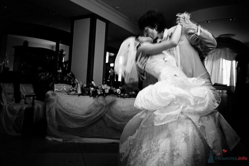Фото 62740 в коллекции Моя оранжевая свадьба