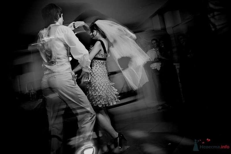 Фото 62774 в коллекции Моя оранжевая свадьба - yanechka