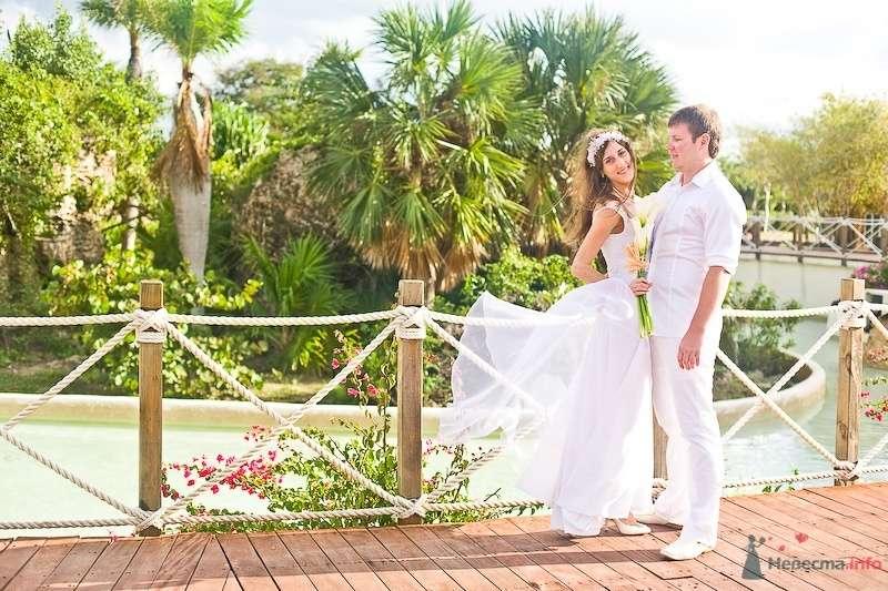 Жених и невеста стоят, прислонившись друг к другу, возле пальмы - фото 60183 lerna5