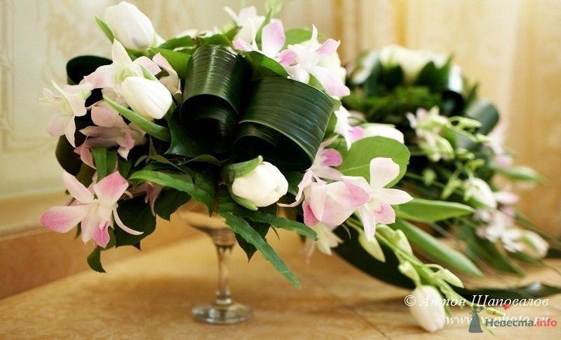 Букет из белых тюльпанов, розовых фрезий и аспидистры.