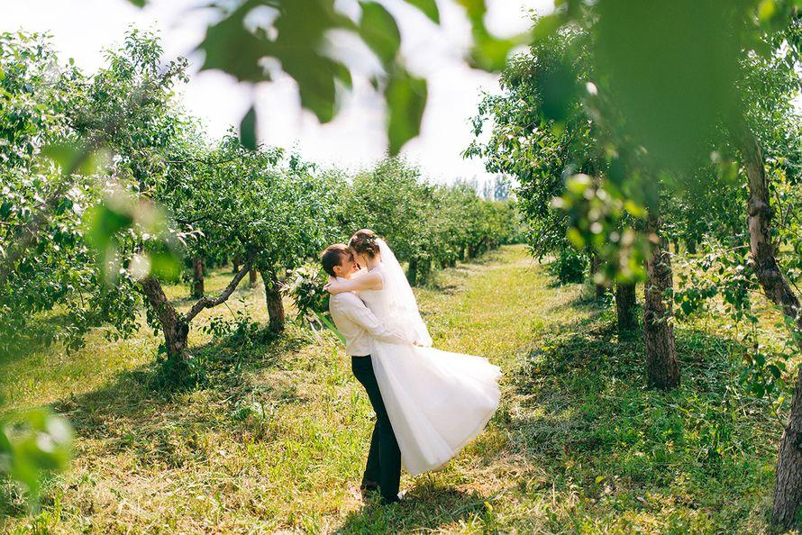 """Фото 16826498 в коллекции Алина+Антон - Свадебная студия """"Marry Grand"""""""