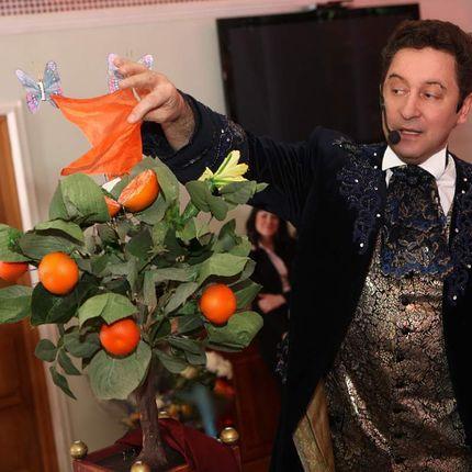 """Номер иллюзиониста """"Апельсиновое дерево"""""""