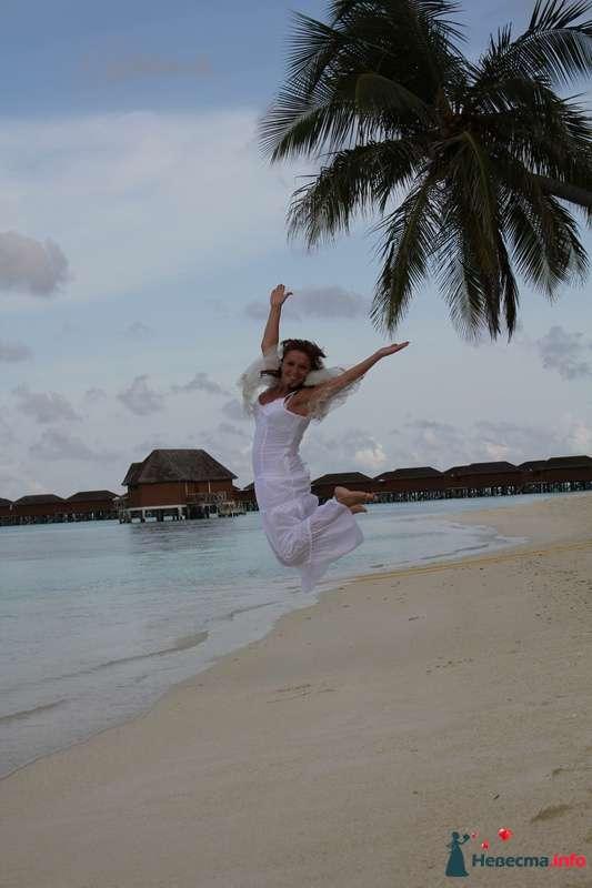 Фото 113772 в коллекции Свадебное путешествие на Мальдивы - Lenysik