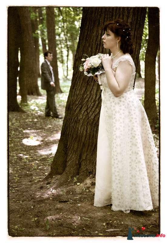Свадьба Яны и Алексея - фото 91521 Фотографы Тили и Гев