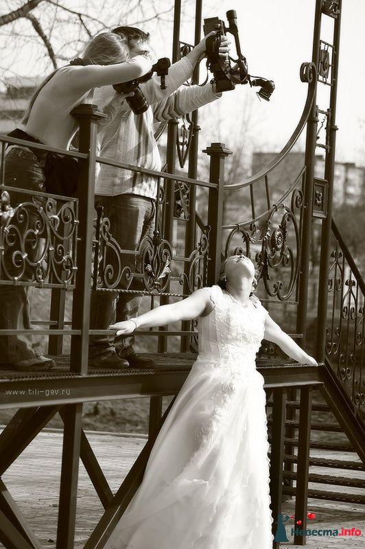 Фото 91581 в коллекции Костя и Катя - Фотографы Тили и Гев
