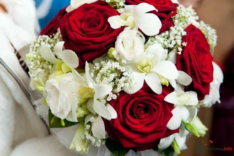 Букет невесты из ярко-красных роз, белых орхидей, эустом и гипсофилы  - фото 63464 лилипут