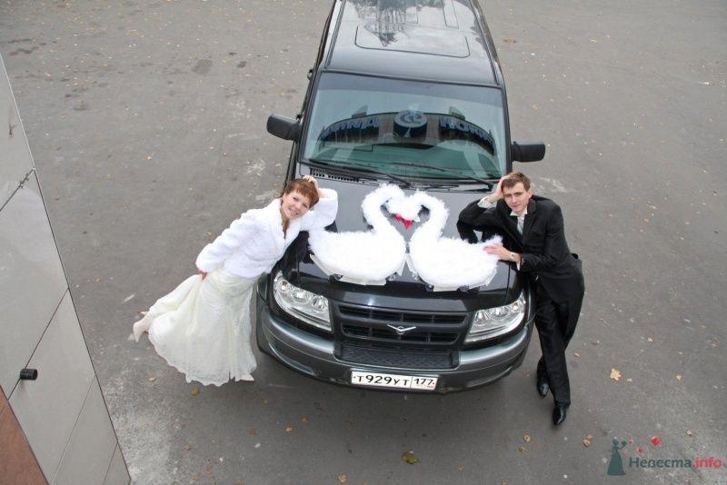 венчание, наши лебеди - фото 46438 EvAnLe