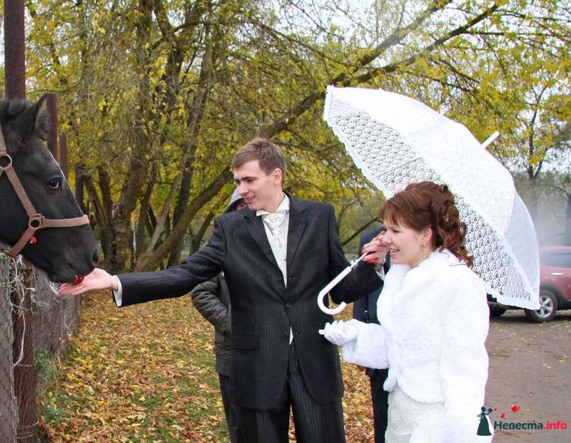 зонт, белый - фото 100377 EvAnLe