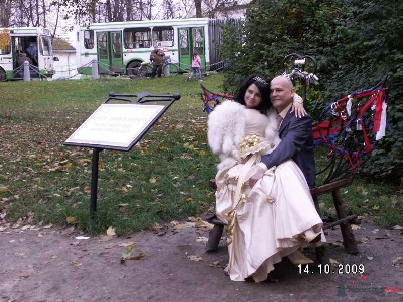 скамейка счастья - фото 59727 Юлия_К