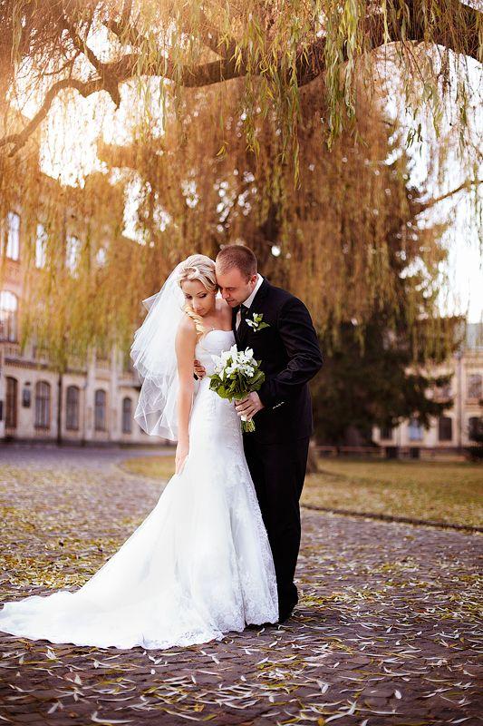 Фото 990147 в коллекции Свадебный - Студия Bashkir-foto