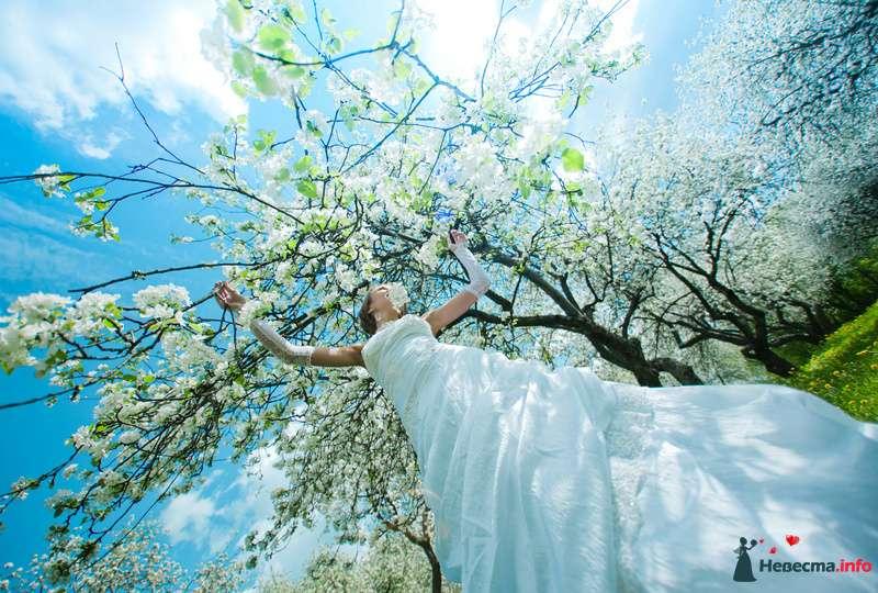 Фото 103764 в коллекции свадебное лето - Невеста01