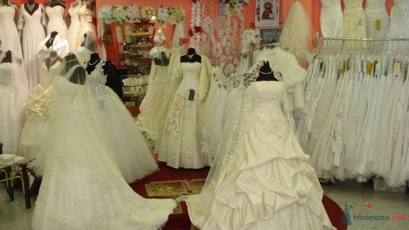 Фото 47058 в коллекции центр  свадебной  моды  BELLISSIMA - Bellissi