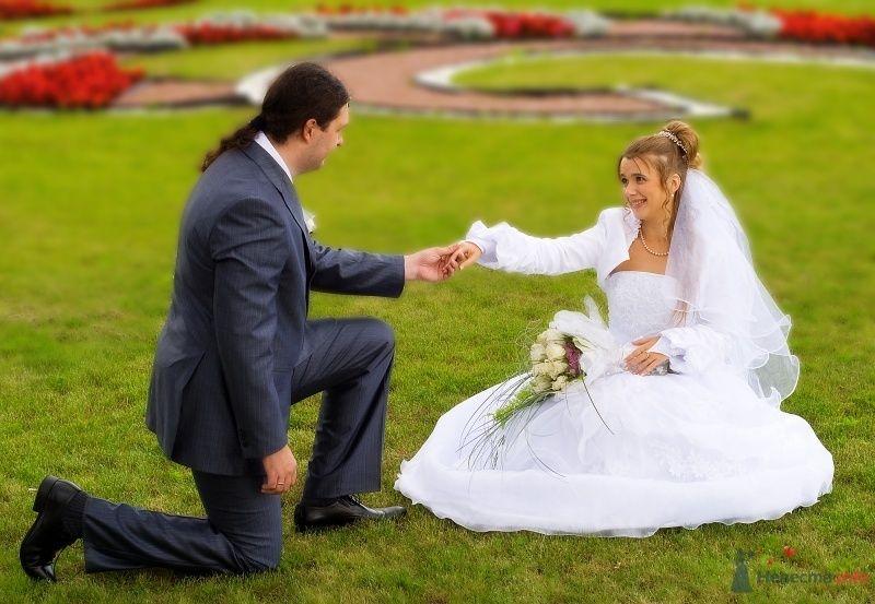 Жених и невеста, взявшись за руки, сидят на траве в парке - фото 49364 Аделя Хильман