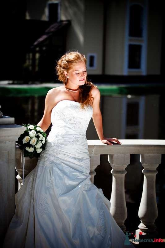 Elena - фото 112489 Свадебный фотограф Алексей Константинов