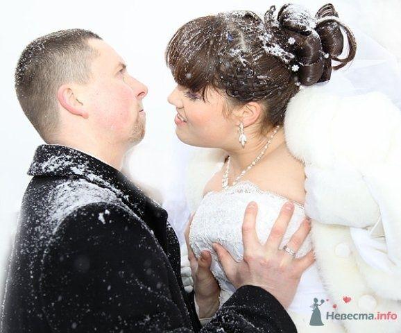 Фото 62174 в коллекции Как Кошка замуж выходила 08.01.2010 - Koshka_Lu