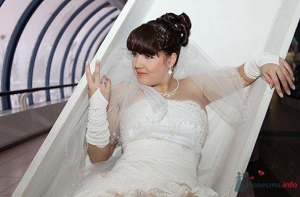 Фото 62802 в коллекции Как Кошка замуж выходила 08.01.2010 - Koshka_Lu