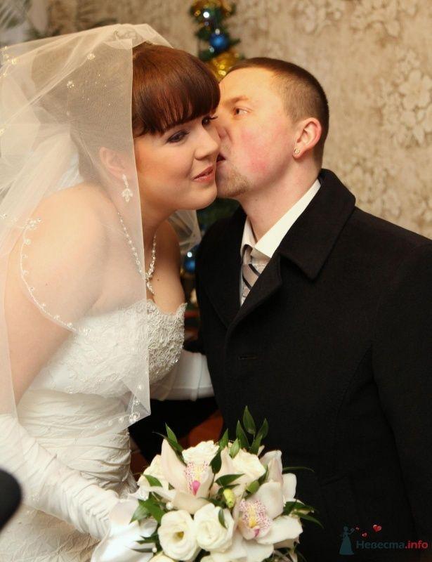 Фото 68356 в коллекции Как Кошка замуж выходила 08.01.2010 - Koshka_Lu