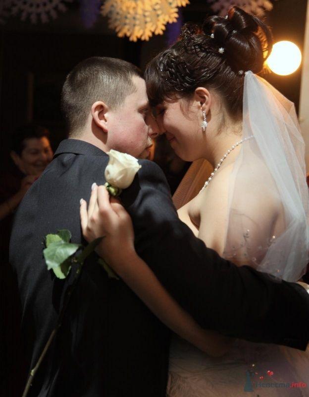 Фото 68897 в коллекции Как Кошка замуж выходила 08.01.2010