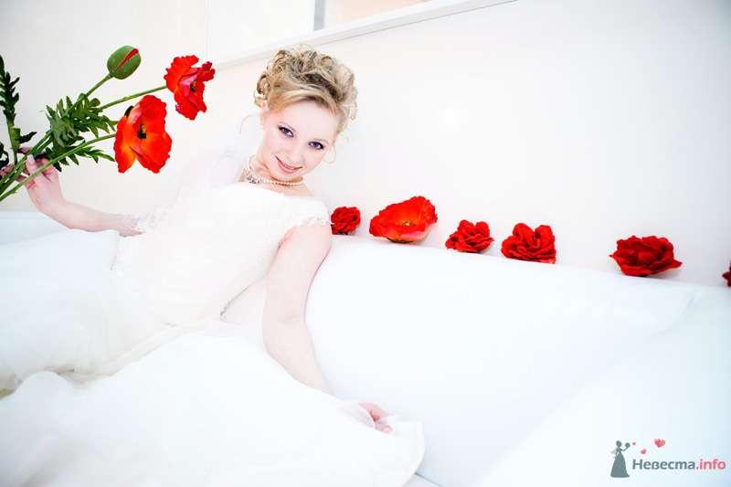 Фотосессия невесты в белом, на фоне красных маков - фото 71671 Танюхин