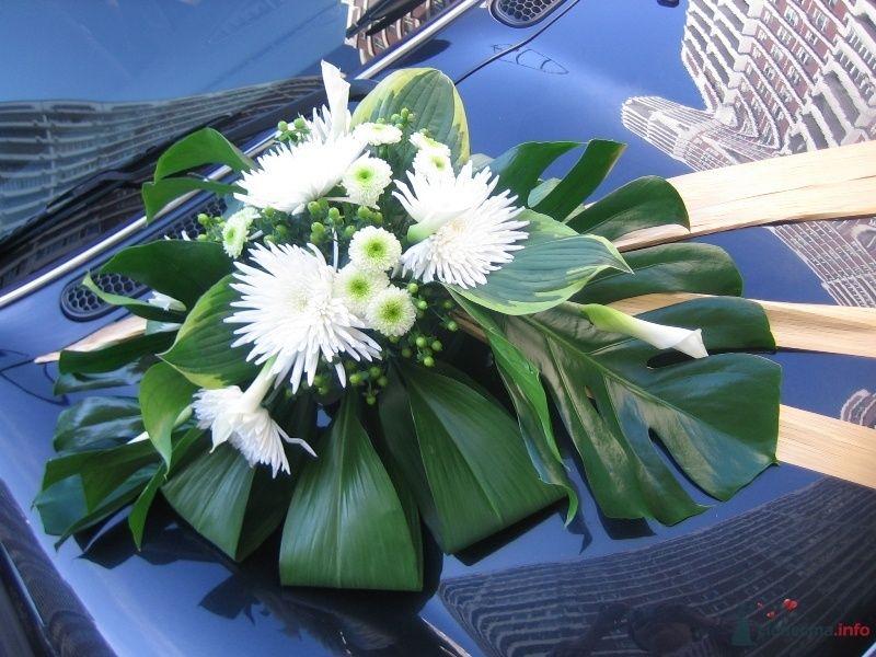 """Оформление автомобиля - фото 50892 Салон цветов """"SpringPoint"""""""
